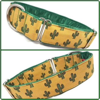 "1.5"" Cactus House/Tag Collar"