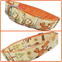 Fox and Owls Martingale Collar
