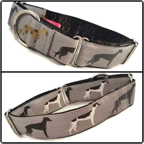 Hounds on Grey Martingale Collar