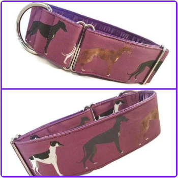 "2"" Hounds on Purple House Collar"