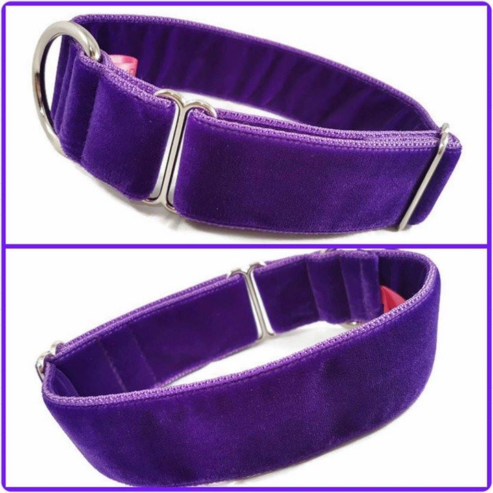 Create Your Own - Double Velvet House Collar