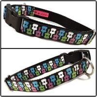 """1"""" Guitars Clip Dog Collar"""