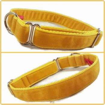 "1"" Gold Double Swiss Velvet House Collar"