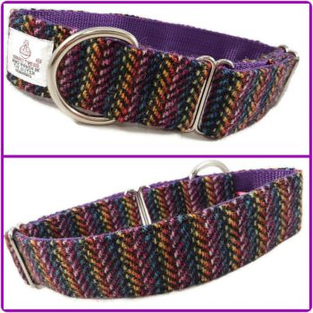 "1.5"" Spectrum of Colour Harris Tweed House Collar"