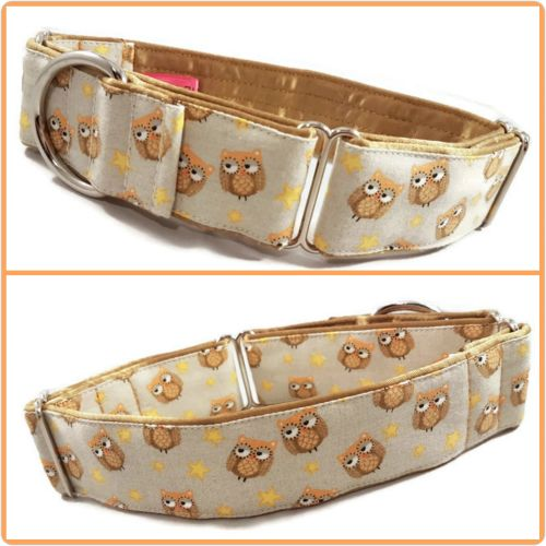 Wise Owls Martingale Collar