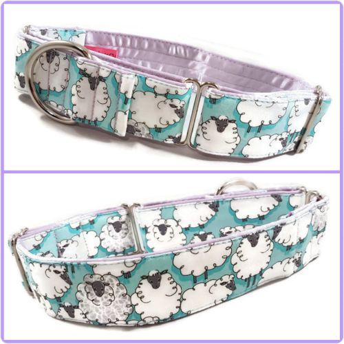 Turquoise Sheepish Martingale Collar