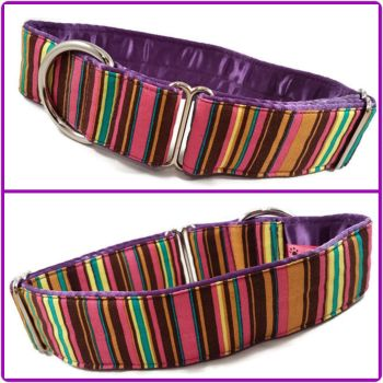 "1.5"" Purple Stripes House/Tag Collar"