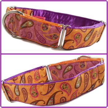 Spice Garden Two-Tone Martingale Collar