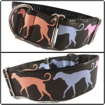 "2"" Multi Coloured Hounds House Collar"