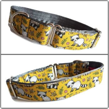 """1"""" Mustard Racoons Whippet House Collar"""