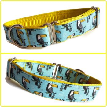 "1"" Toucans Whippet House Collar"