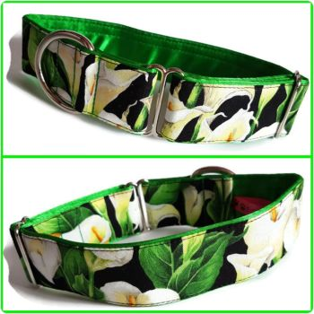 "1.5"" Lillies House/Tag Collar"