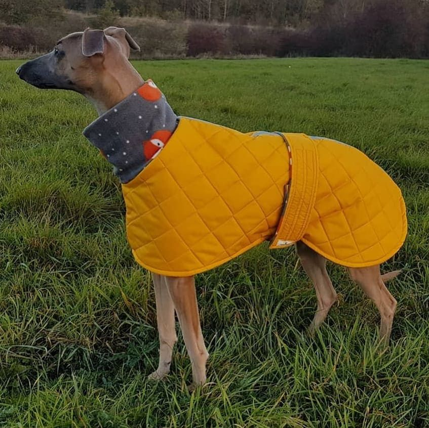 <!-- 004 --> Padded Waterproof Snood Neck Coats