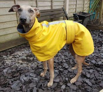 Woven Waterproof Snood Neck Coats - Plain Colours
