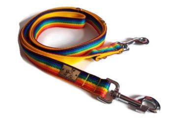 Create Your Own - 6ft Double Webbing Training Lead