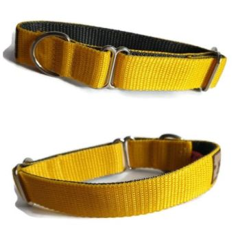 "1"" Double Webbing Yellow/Grey Whippet House Collar"