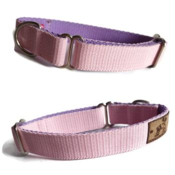 "1"" Double Webbing Baby Pink/ Lilac Whippet House Collar"