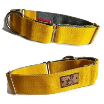"1.5"" Double Webbing Yellow/Grey Whippet Martingale"