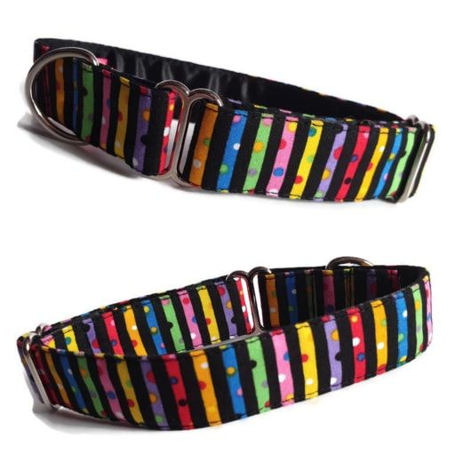 Whippet House Collars