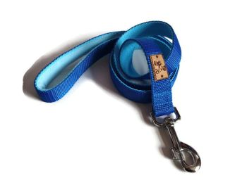 4ft Royal Blue and Turquoise Double Webbing Lead