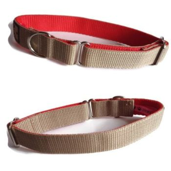 "1"" Double Webbing Beige/Red Greyhound House Collar"