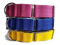 Double Webbing Whippet Collars
