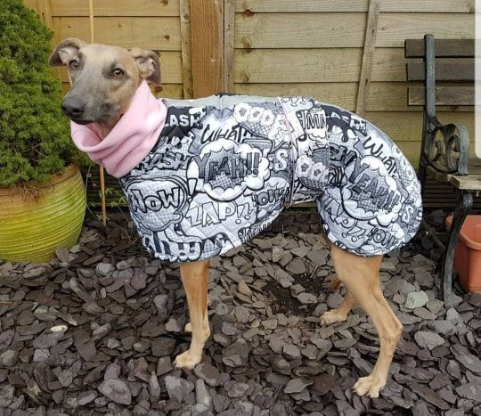 Grey Comic Waterproof Coat