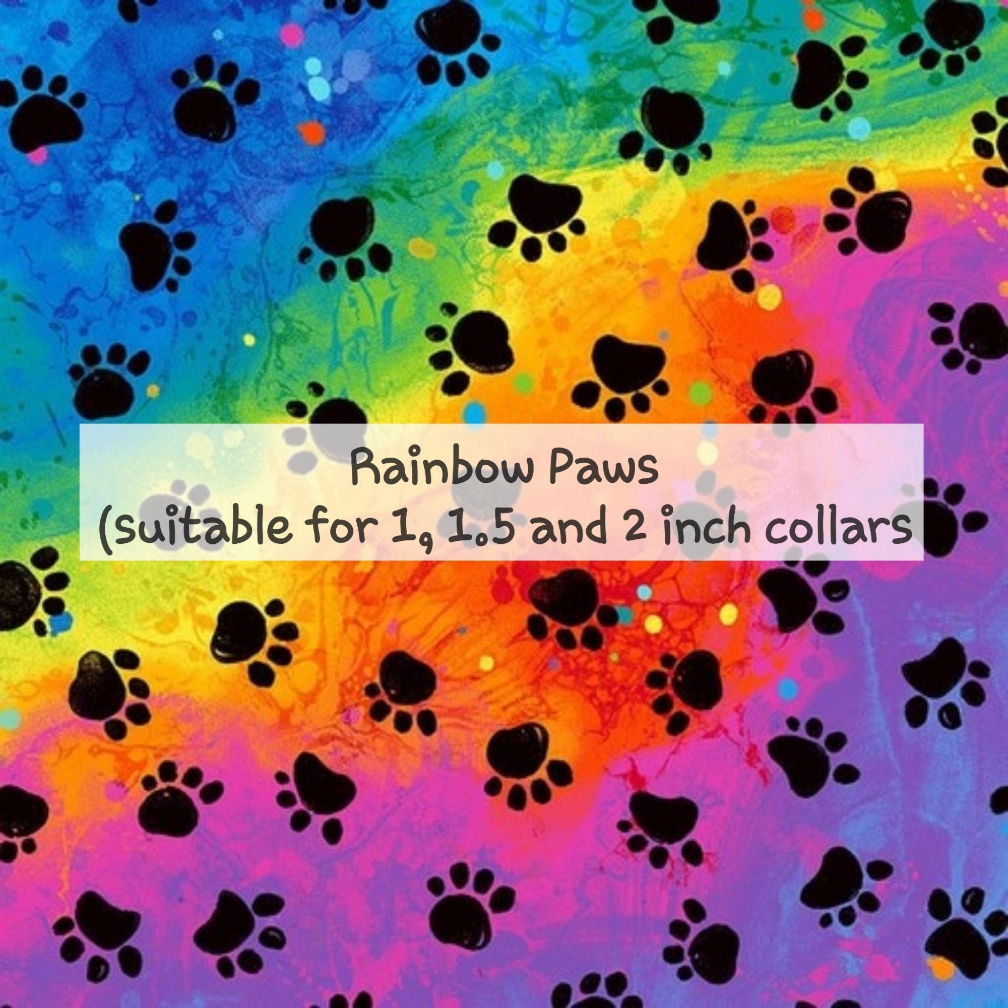 Rainbow Paws