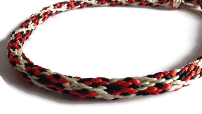 Create Your Own - Ladybird Braided Tag Dog Collar