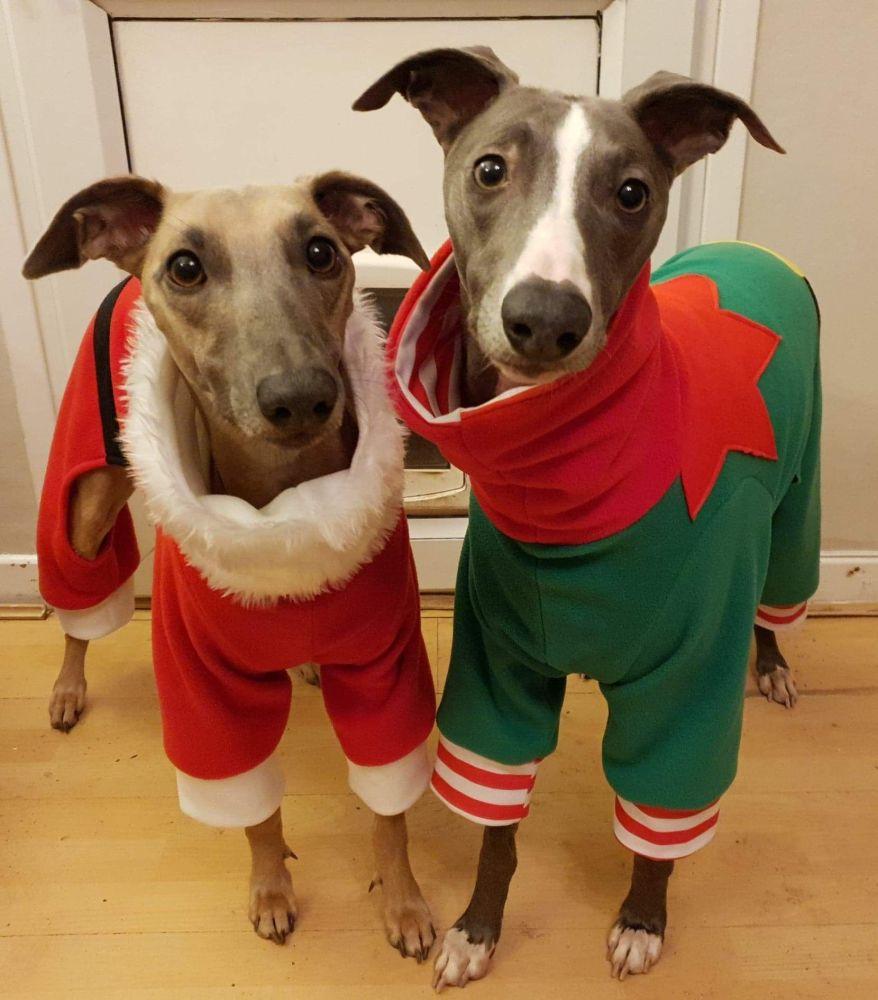 Fleece 4 Leg  Christmas Jammies