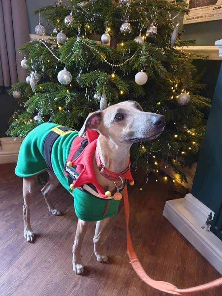 Fleece Christmas Coats