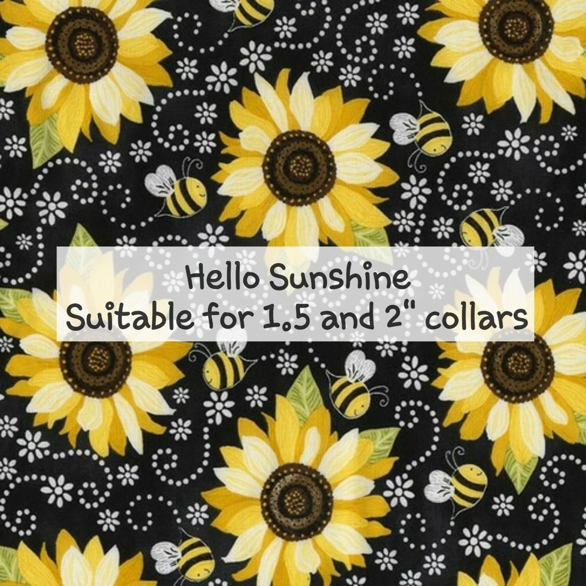 Hello Sunshine - Sutiable for 1.5 and 2 inch collars