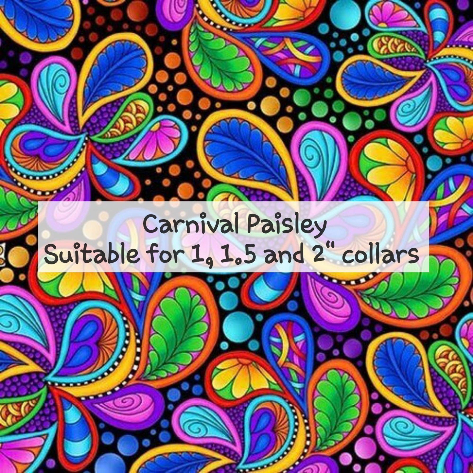 Carnival Paisley