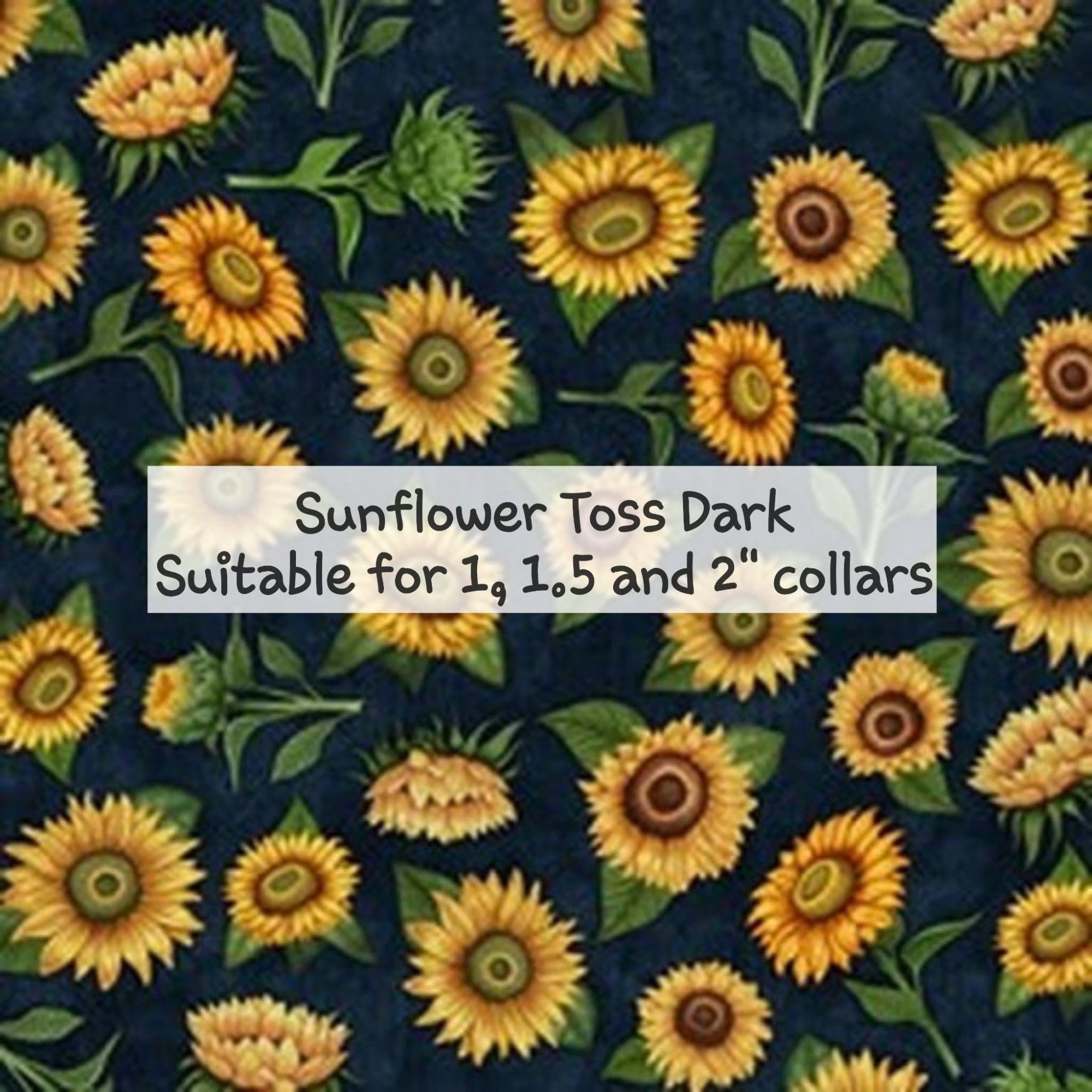 Sunflower Toss Dark