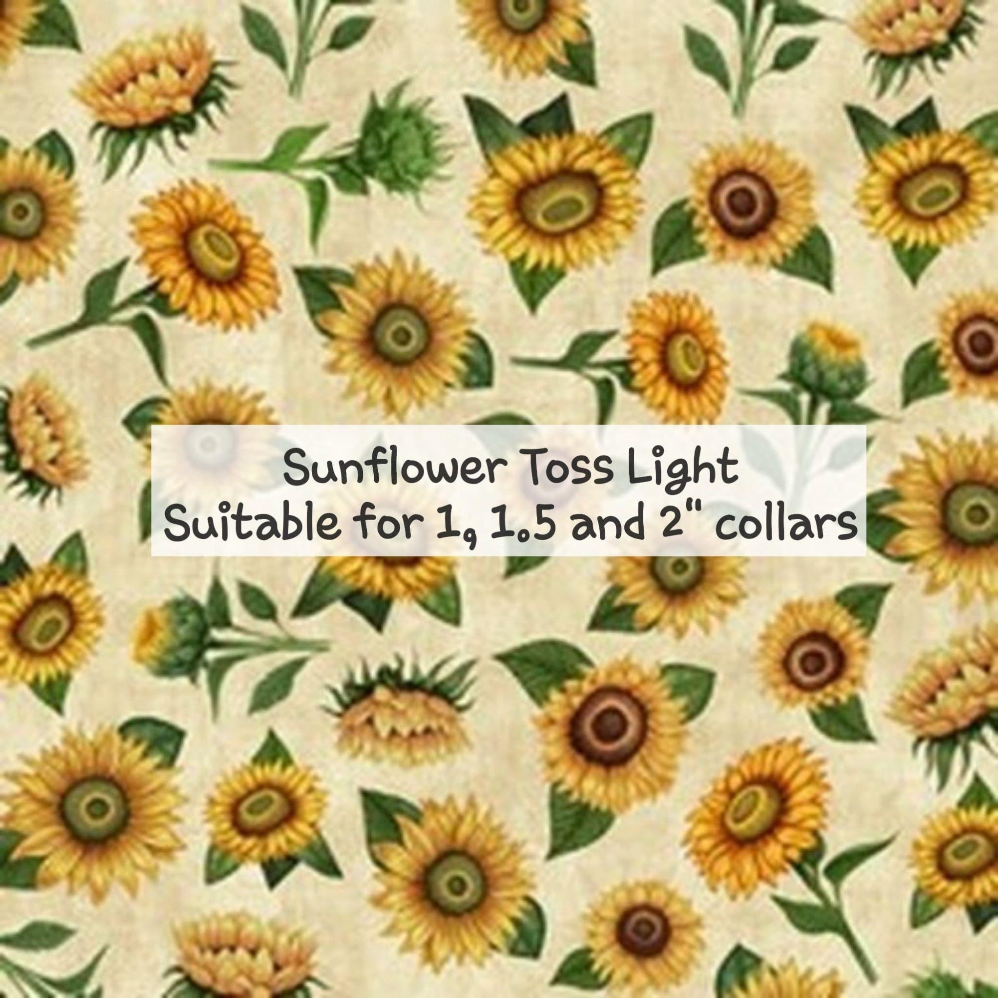 sunflower toss light