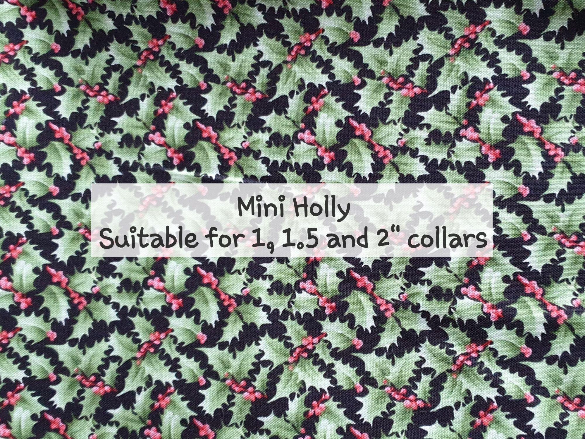 Mini Holly