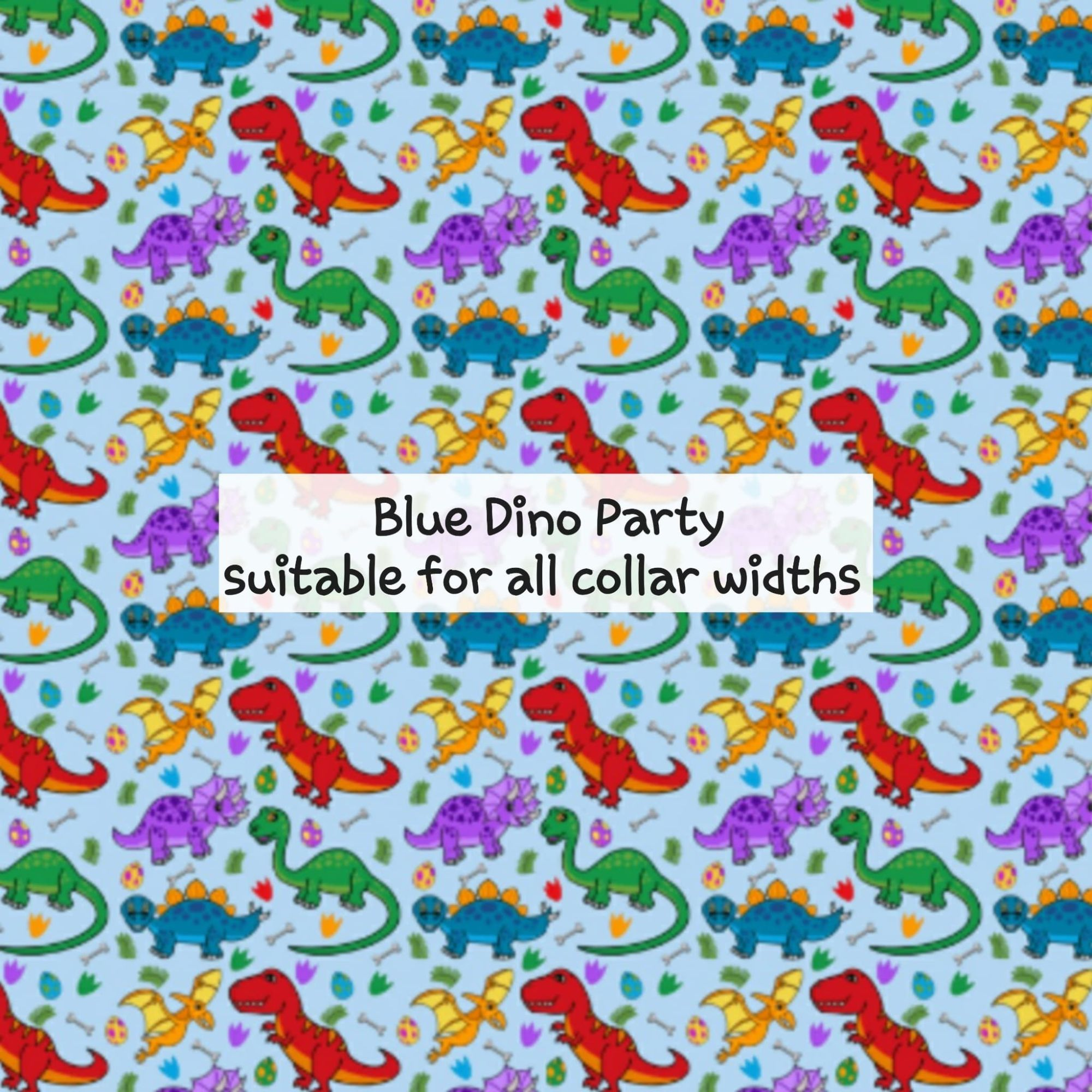 Blue Dino Party
