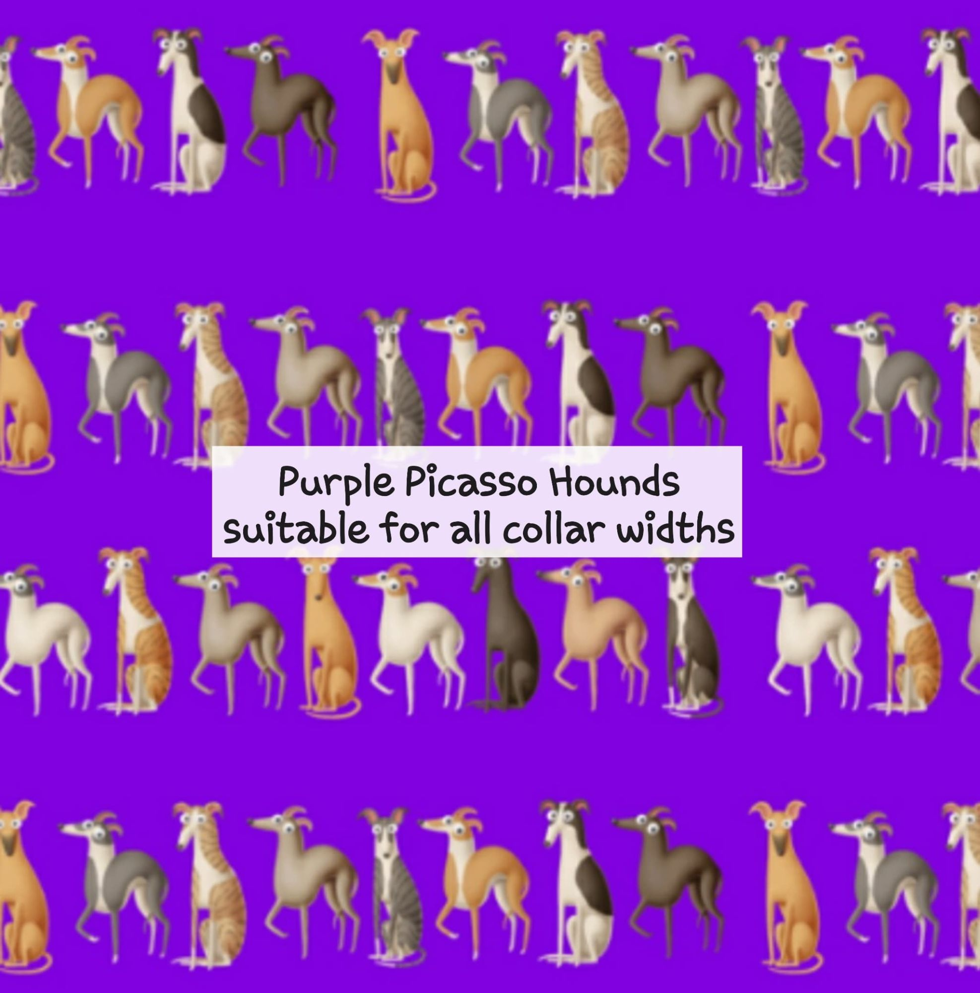 Purple Picasso Hounds - Suitable for all collar widths
