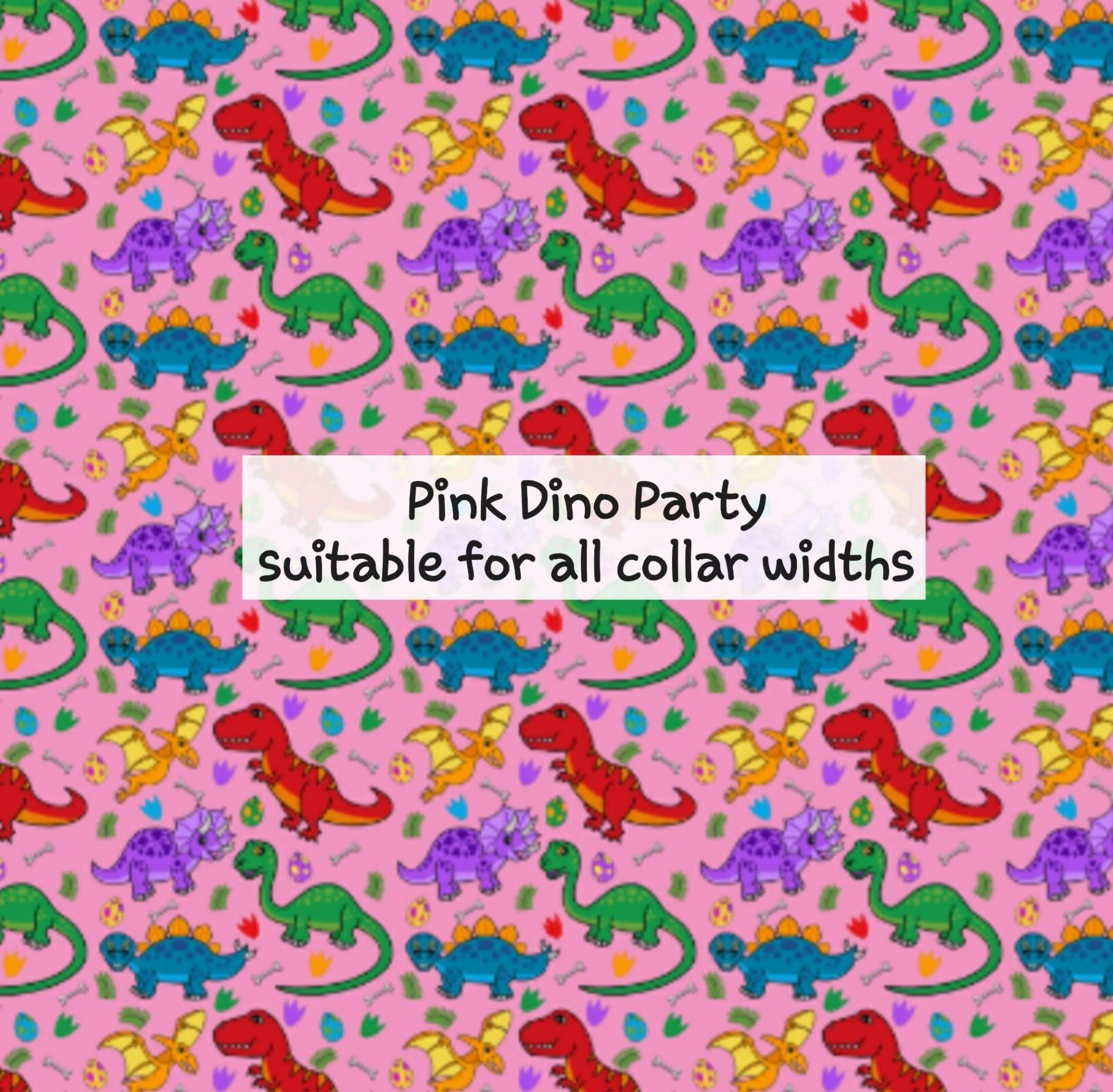 Pink Dino Party