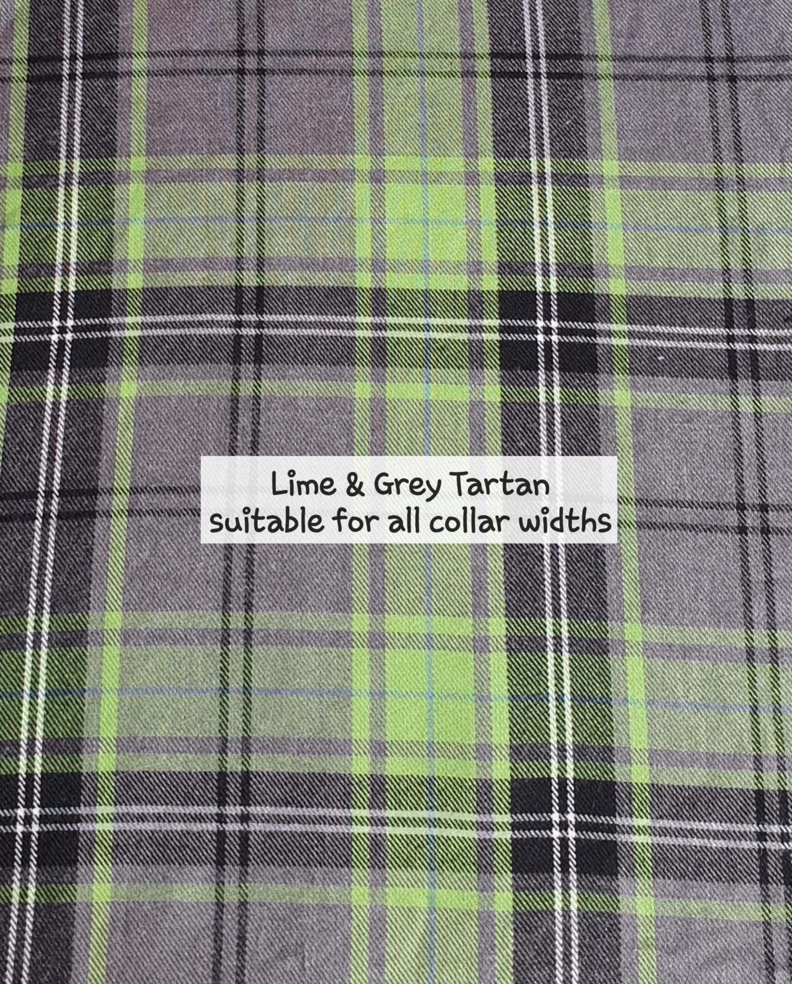 Lime & Grey Tartan