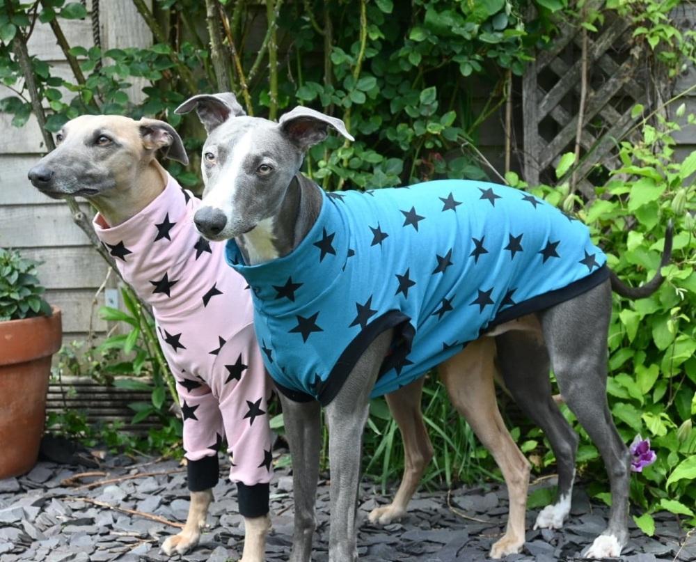 Stars T-shirt Tankies
