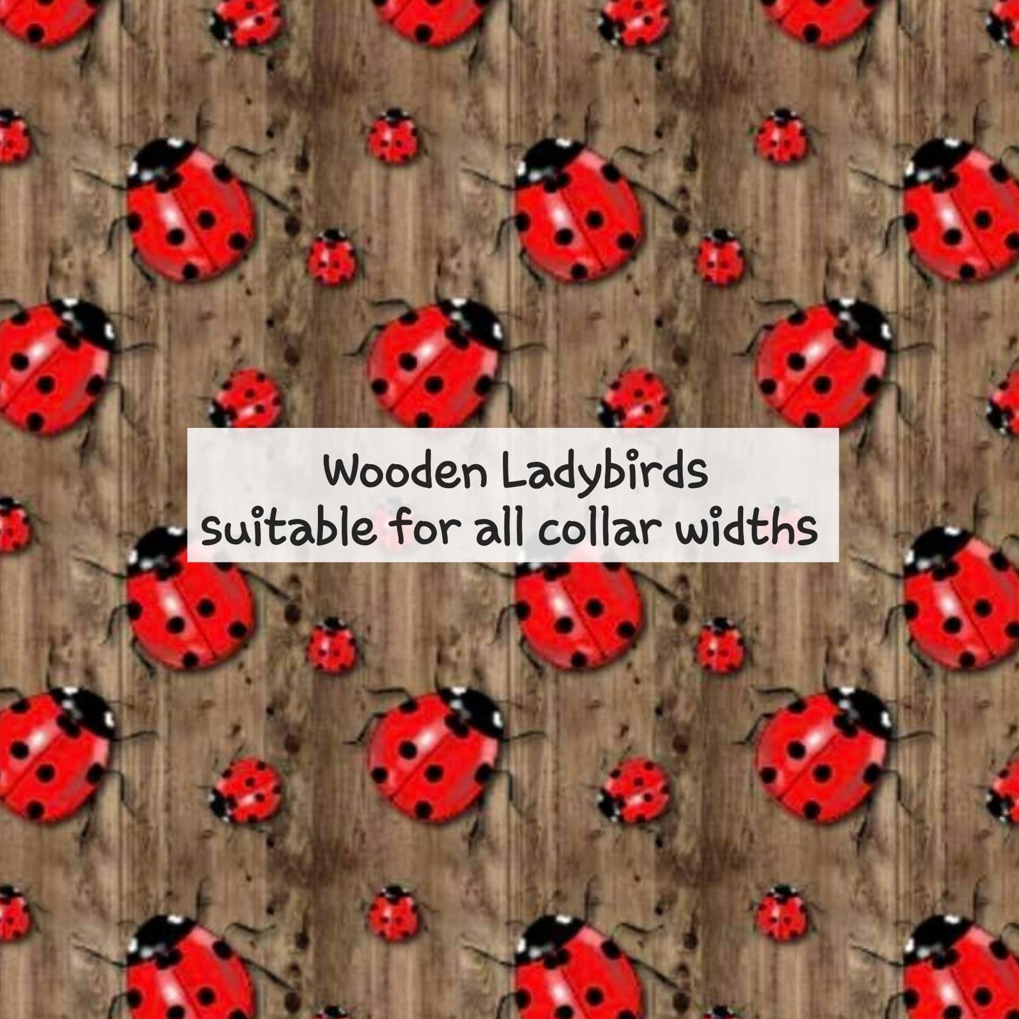 Wooden Ladybirds