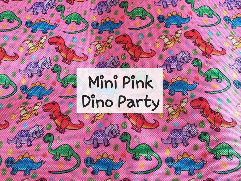 Mini Pink Dino Party