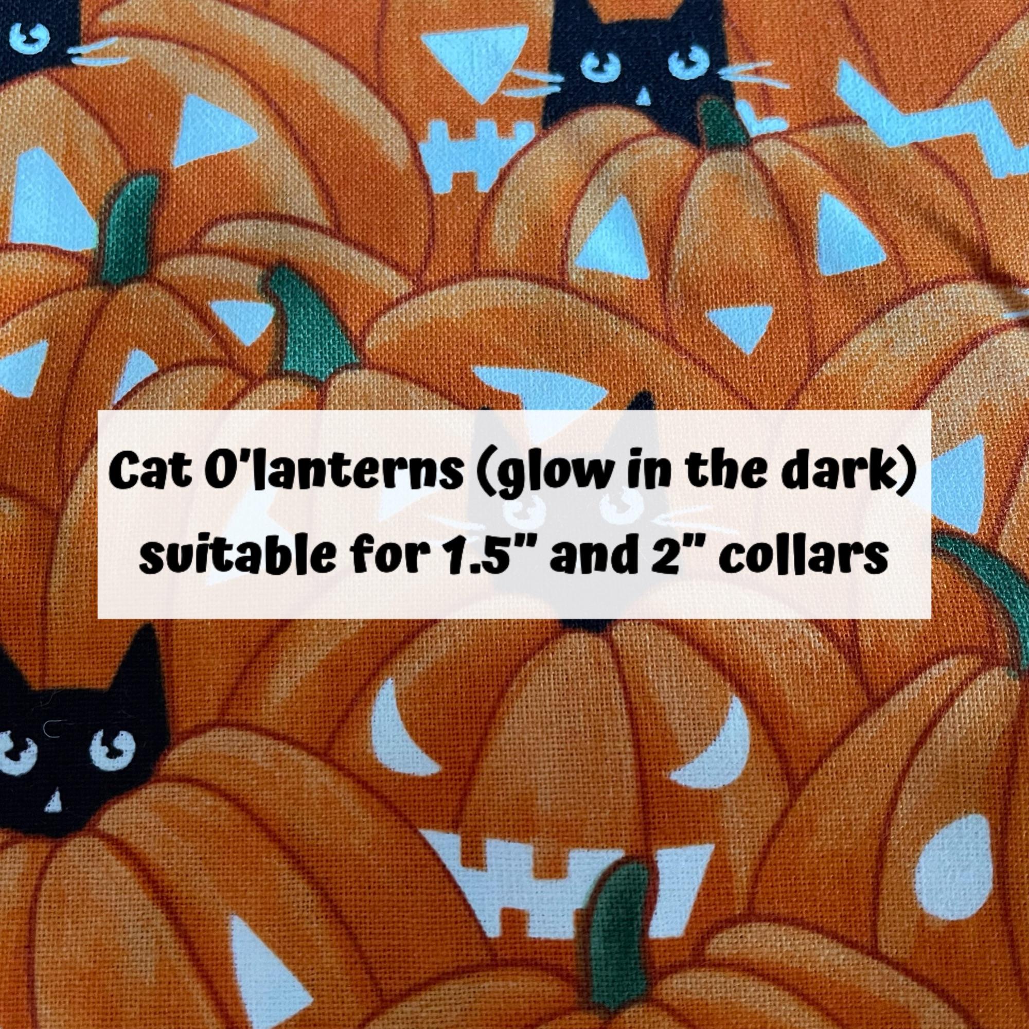 Cat O'Lanterns (glow in the dark)