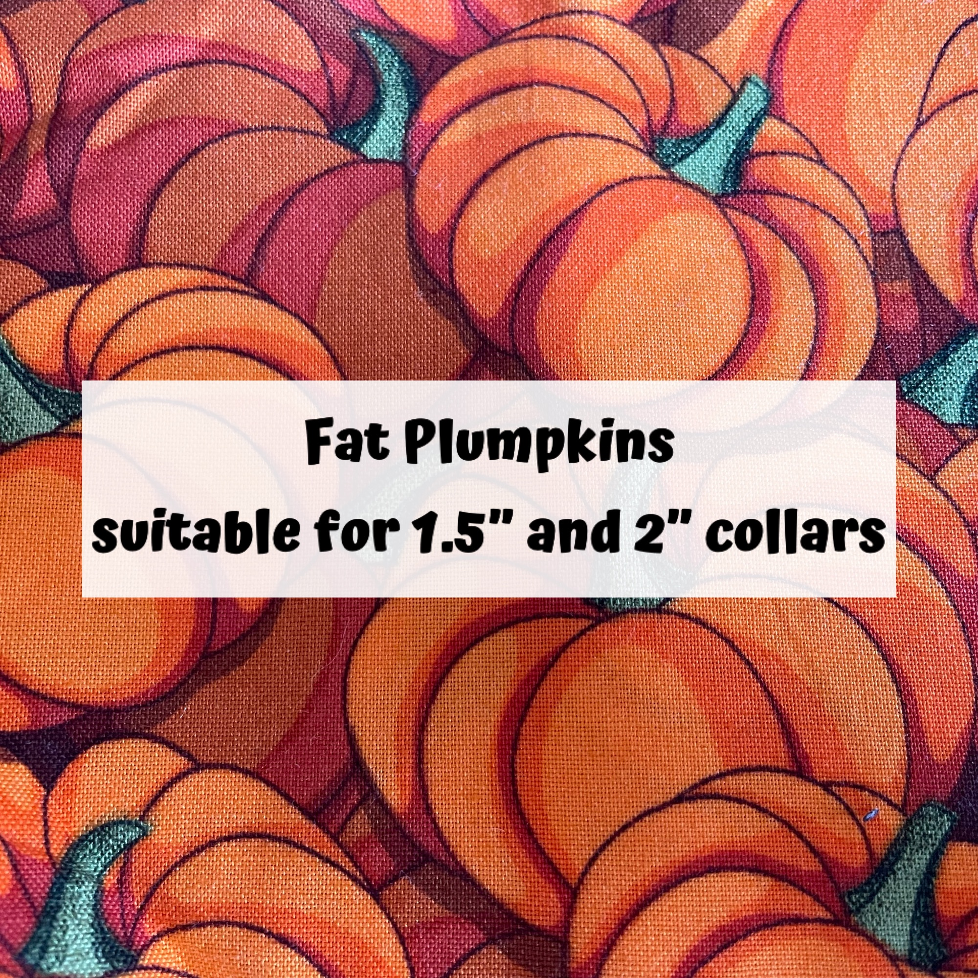 Fat Plumpkins