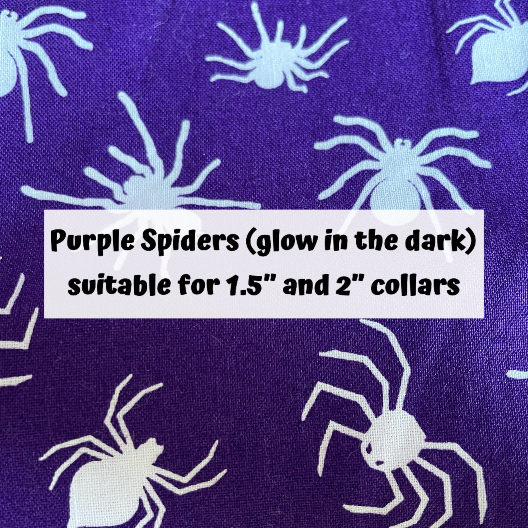 Purple Spiders (glow in the dark)