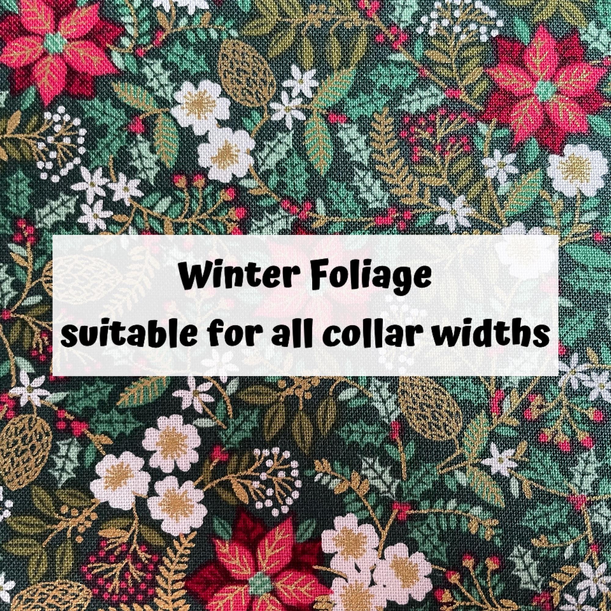 Winter Foliage