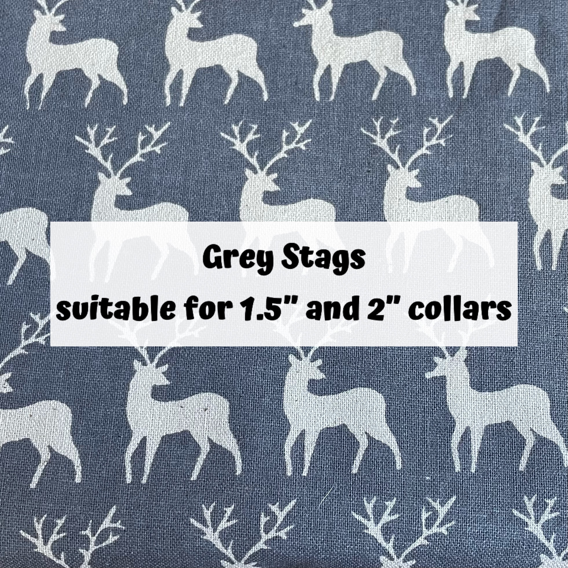 Grey Stags