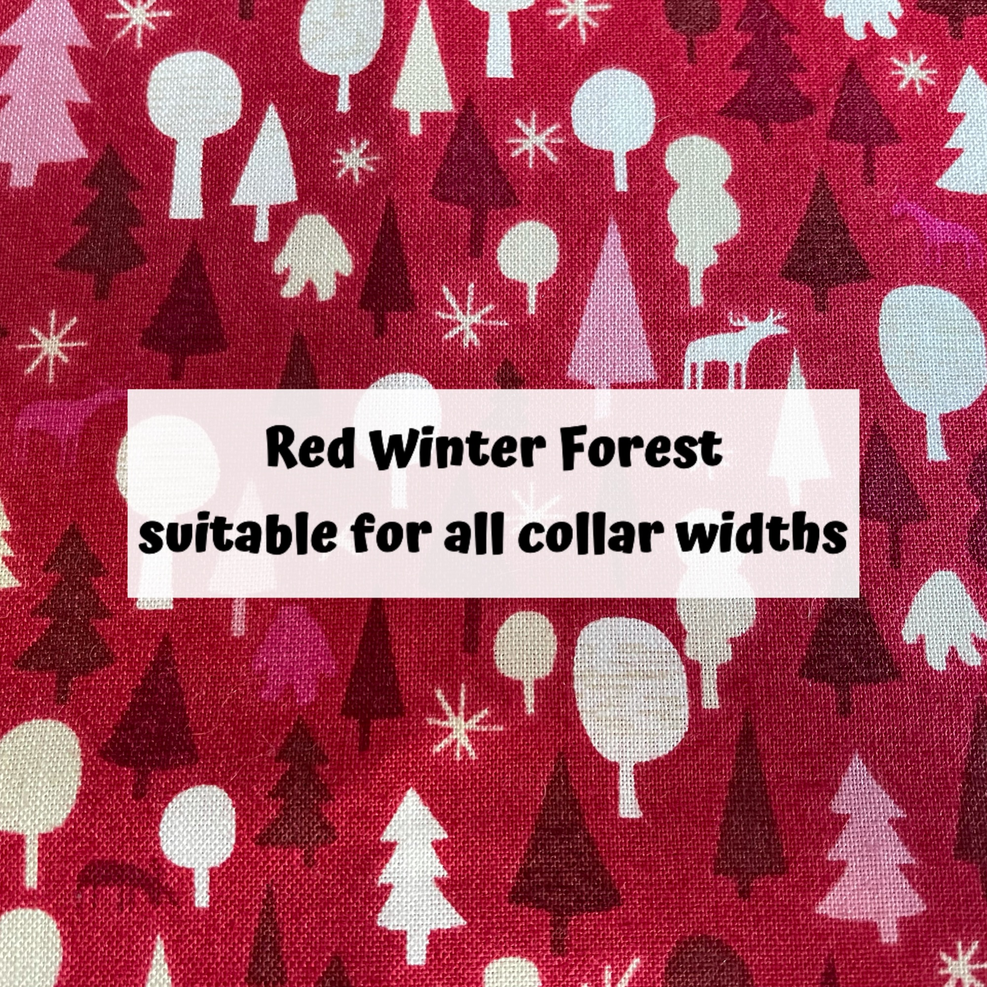 Red Winter Forest