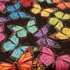 Large Rainbow Butterflies - Suitable for 1.5 and 2 inch collars